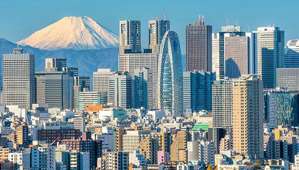 Buildings made of wood: Tokyo and Mount Fuji